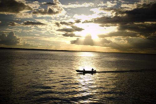 Viaggio in Amazonia, fai parlare l'ayahuasca