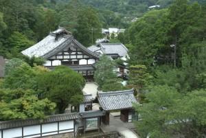 la valle di Kyoto