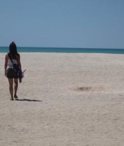 Una spiaggia di conchiglie