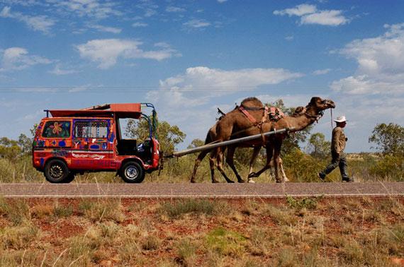 deserto australe