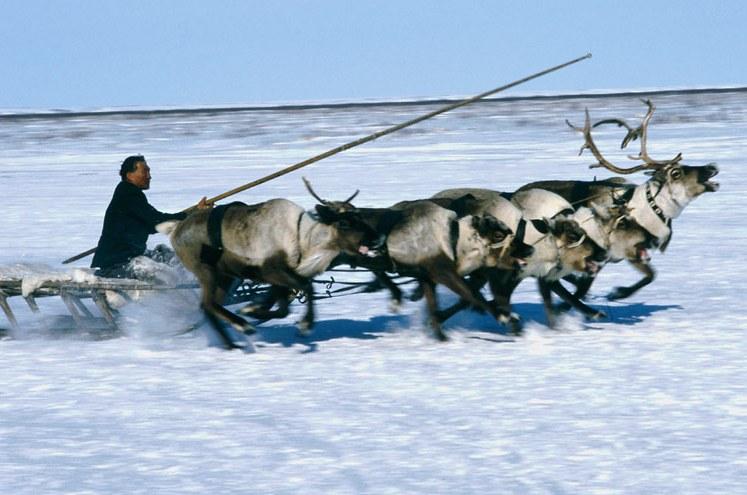 viaggiare da soli in Siberia