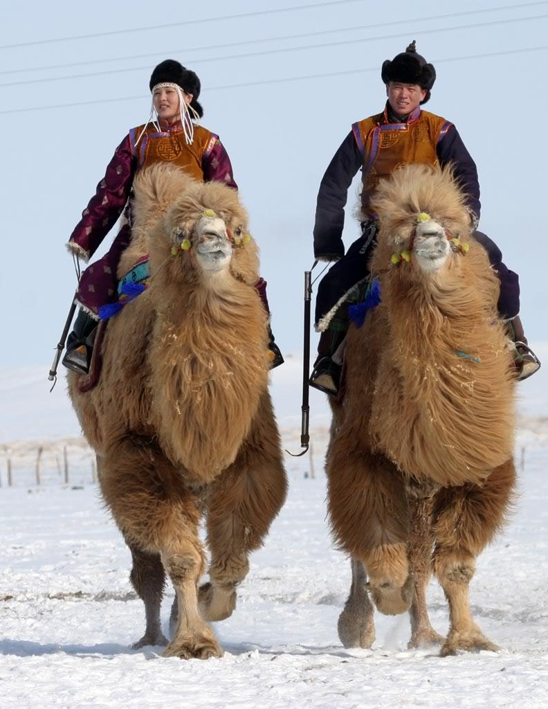 Viaggiare in Mongolia