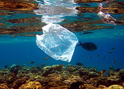 sacchetti-plastica