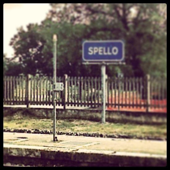 Viaggiare in Italia in Regionale