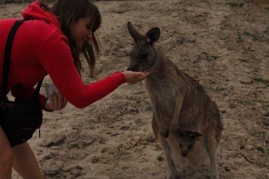 Australia e Nuova Zelanda, le differenze tra sogno e realtà