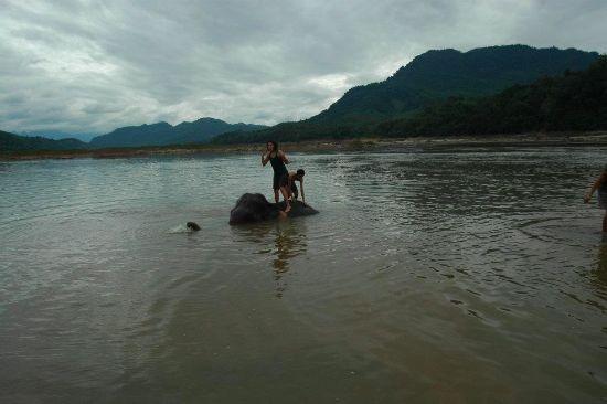 Laos dec 2011