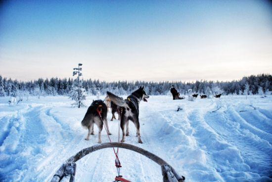 Avventure outdoor in Lapponia in Inverno- Finlandia