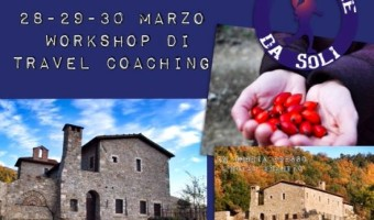 Wokshop Marzo Travel Coaching
