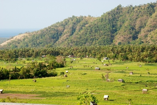 costa Est - Bali