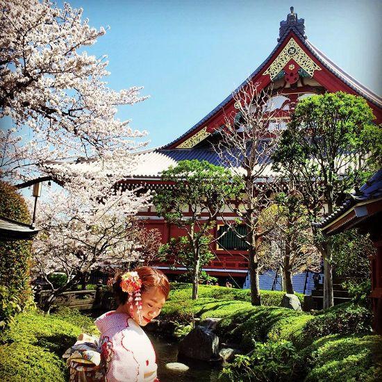 Capodanno di Kyoto - Giappone