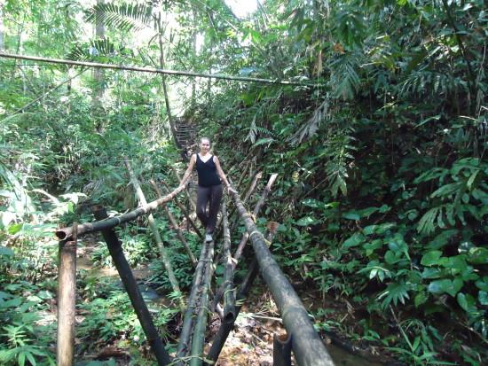 - nella giungla del borneo malese, nonostante dovessi stare senza wifi per 3 giorni, sono riuscita a sopravvivere.