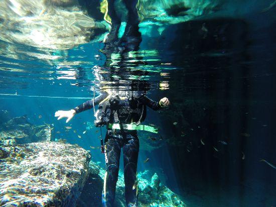Immersioni nel Cenote a Tulum