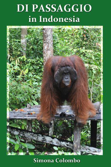 Di Passaggio in Indonesia di Simona Colombo