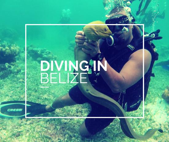 I siti migliori dove fare immersioni in Belize