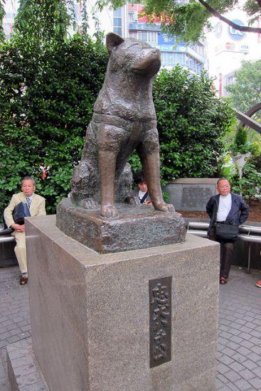 hachiko-shibuia Tokyo