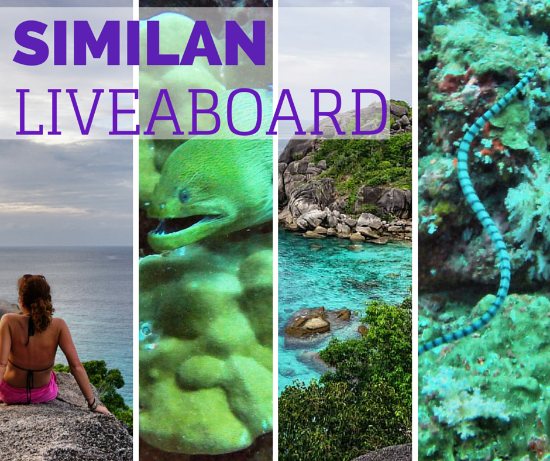 Crociera alle Similan, 4 giorni di liveaboard diving