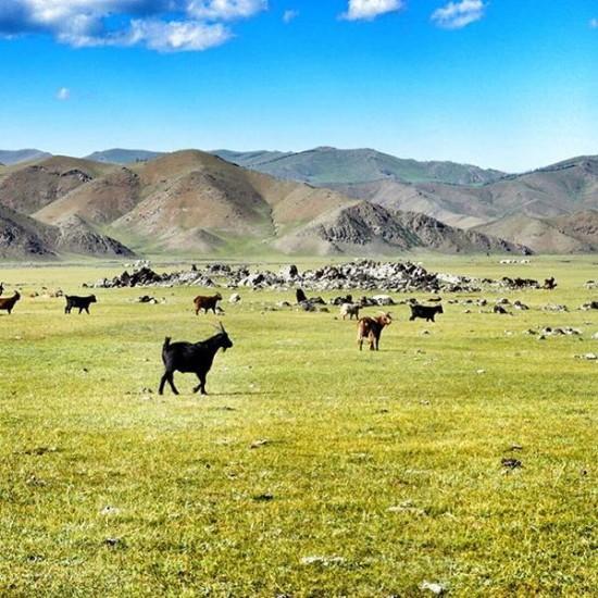 Mongolia da soli