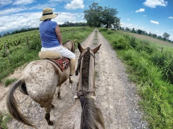 Sayta Ranch Cabalgada- Salta