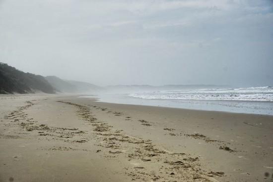 Cintsa Wild Coast