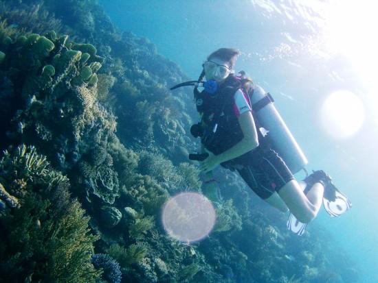 Fare immersioni nel Kalimatan Orientale