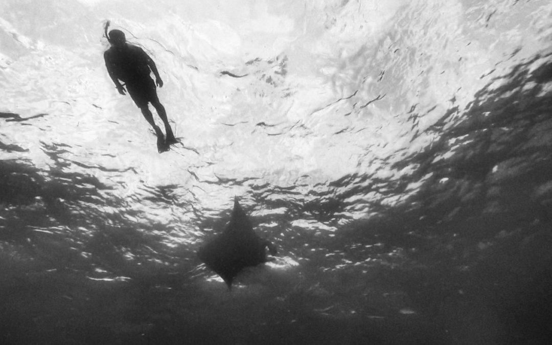 Fare immersioni a Nusa Pendia- Bali