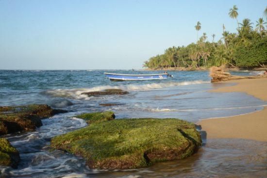 sipagge del costa rica