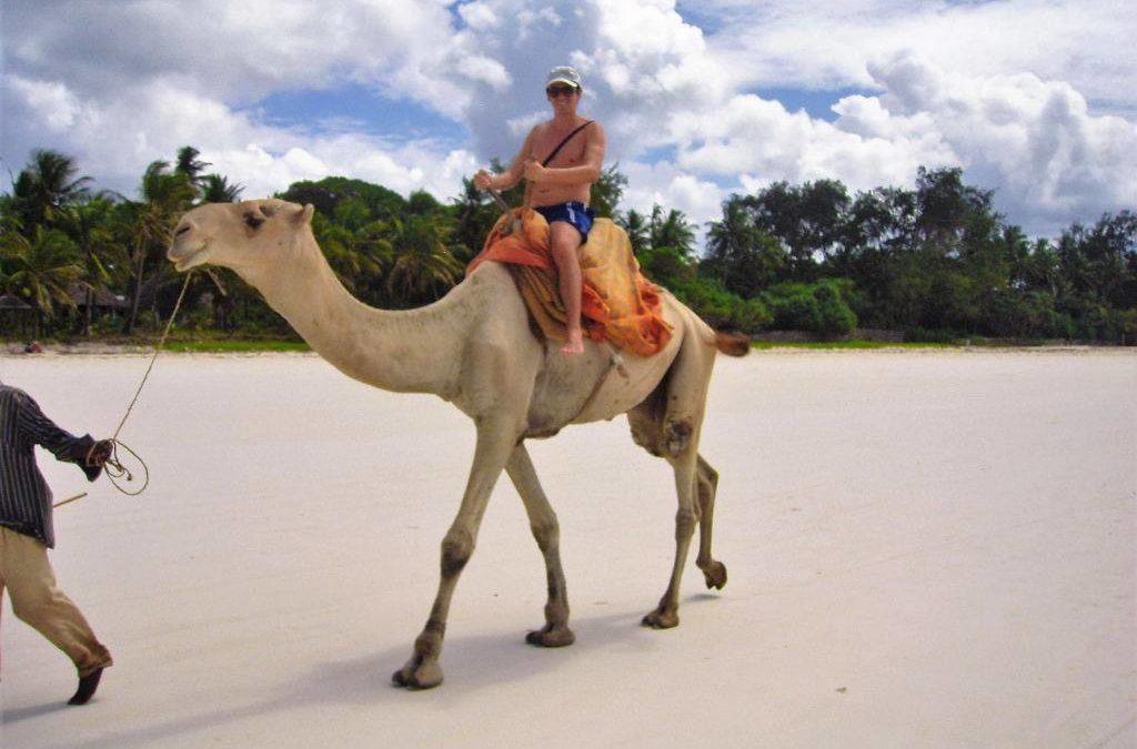 Il lavoro non decolla fa il traduttore come nomade digitale e gira il mondo