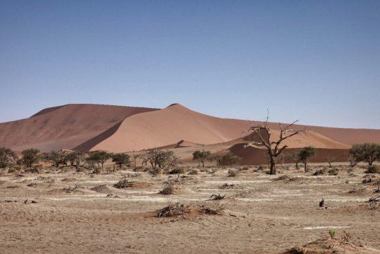 Namibia - Deserto del Namib