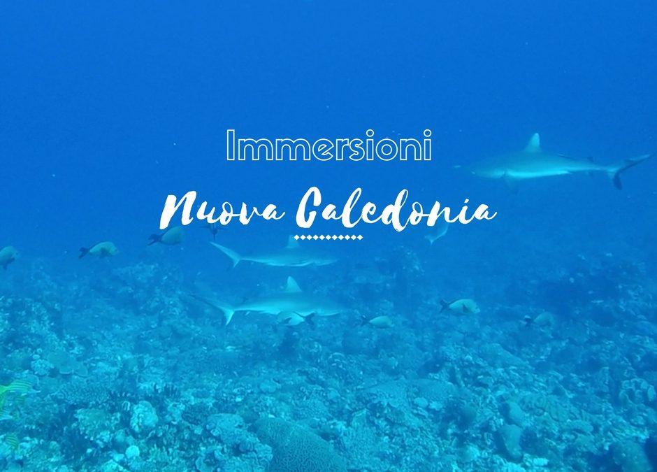 Fare immersioni in Nuova Caledonia: nuotare con 100 squali grigi