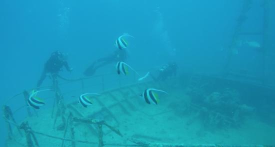 Fare immersioni a Hienghene