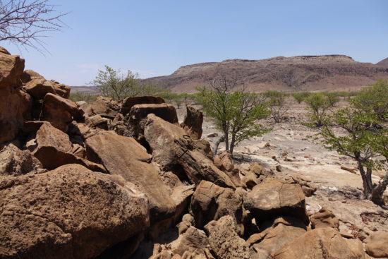 foresta pietrificata - Palmwag