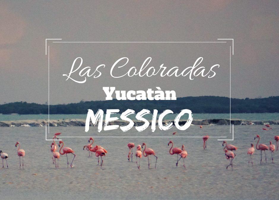 Riserva de Las Coloradas in Yucatan: cosa fare e come visitarla