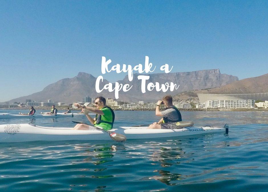 Fare Kayak a Cape Town: tra delfini e balene