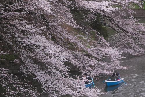 Cinque Cose da fare assolutamente a Tokyo