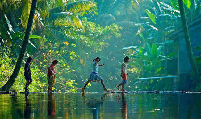 Kerala e Tamil Nadu: cultura, natura, spiritualità e benessere