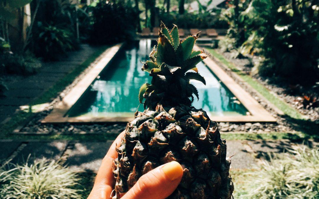 Come trovare una Villa ad Ubud a 35€ – Bali