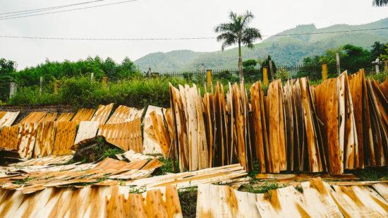 MuongLo - Vietnam