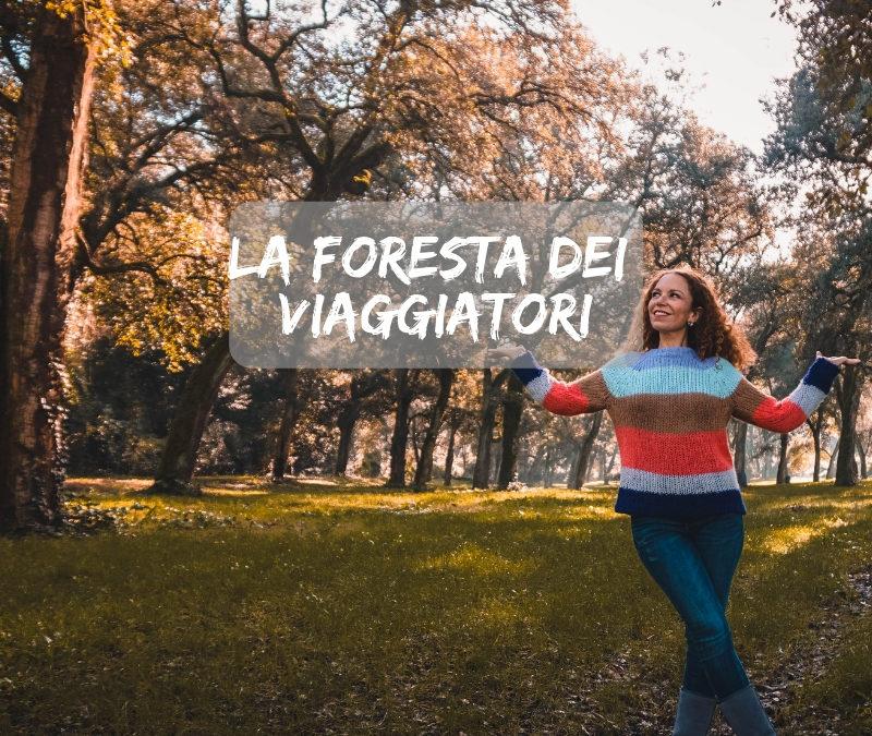 Creiamo la foresta dei viaggiatori: A Natale regala o adotta un albero con Treedom
