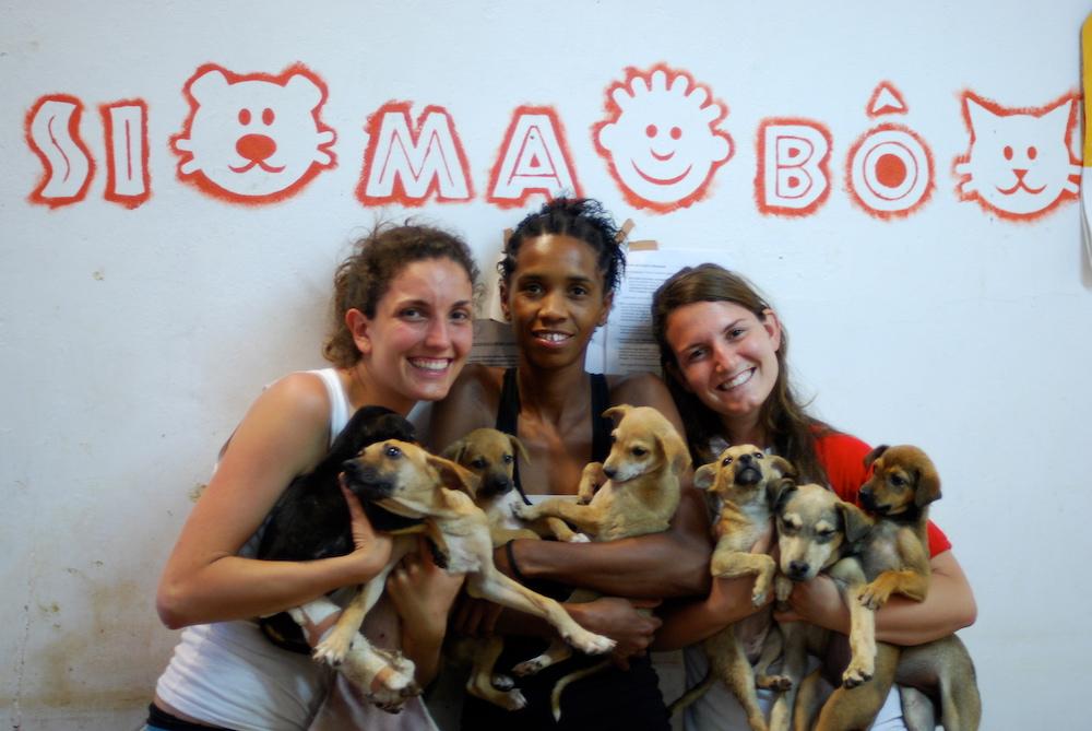 Fare volontariato con cani e gatti nel cuore di Capo Verde