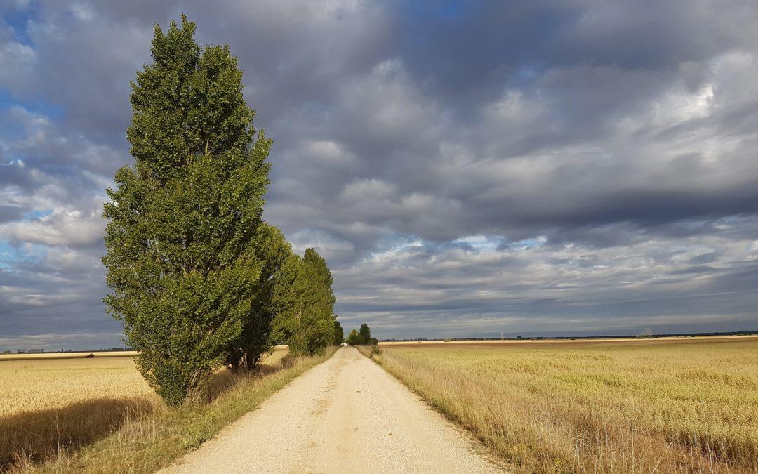 5 Buoni Motivi per fare il Cammino di Santiago da solo