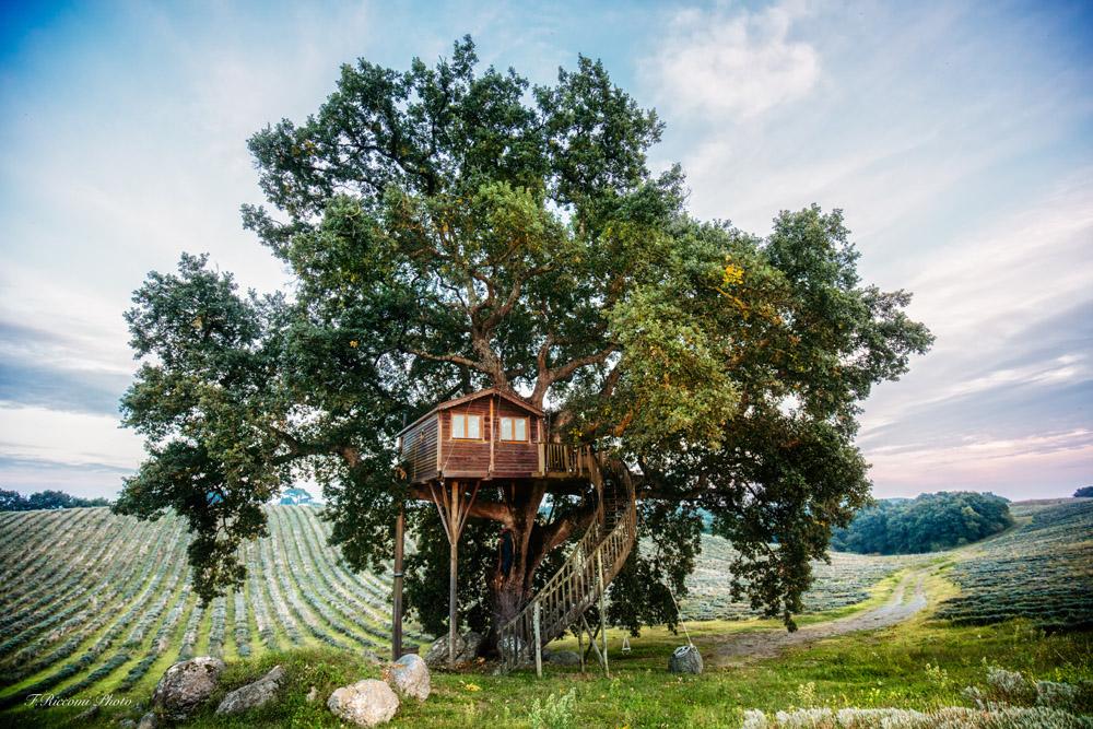 Le case sull'albero più belle d'Italia